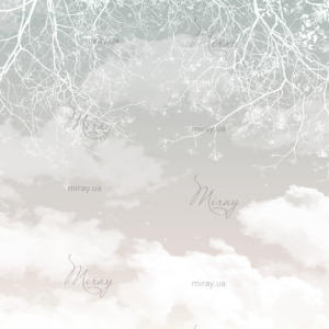 d-14-074-Ветки белые на фоне неба