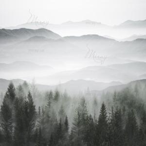 d-14-161-Лес с горами в тумане